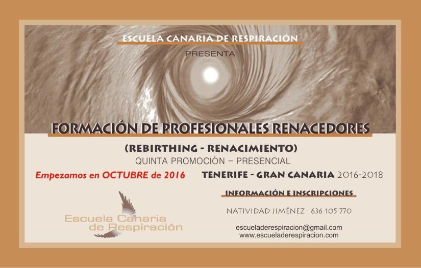 Artículo sobre la profesión de Renacedor