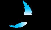 Escuela Canaria de Respiración - Escuela Canaria de Respiración
